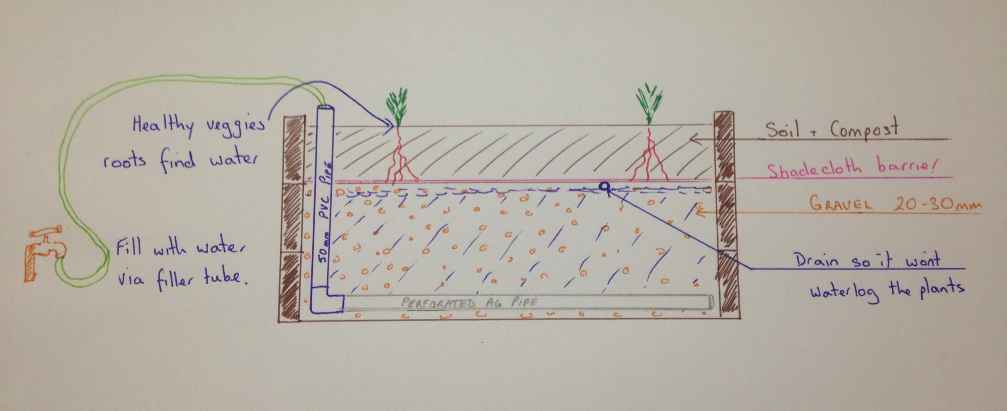 How to build a wicking garden bed.