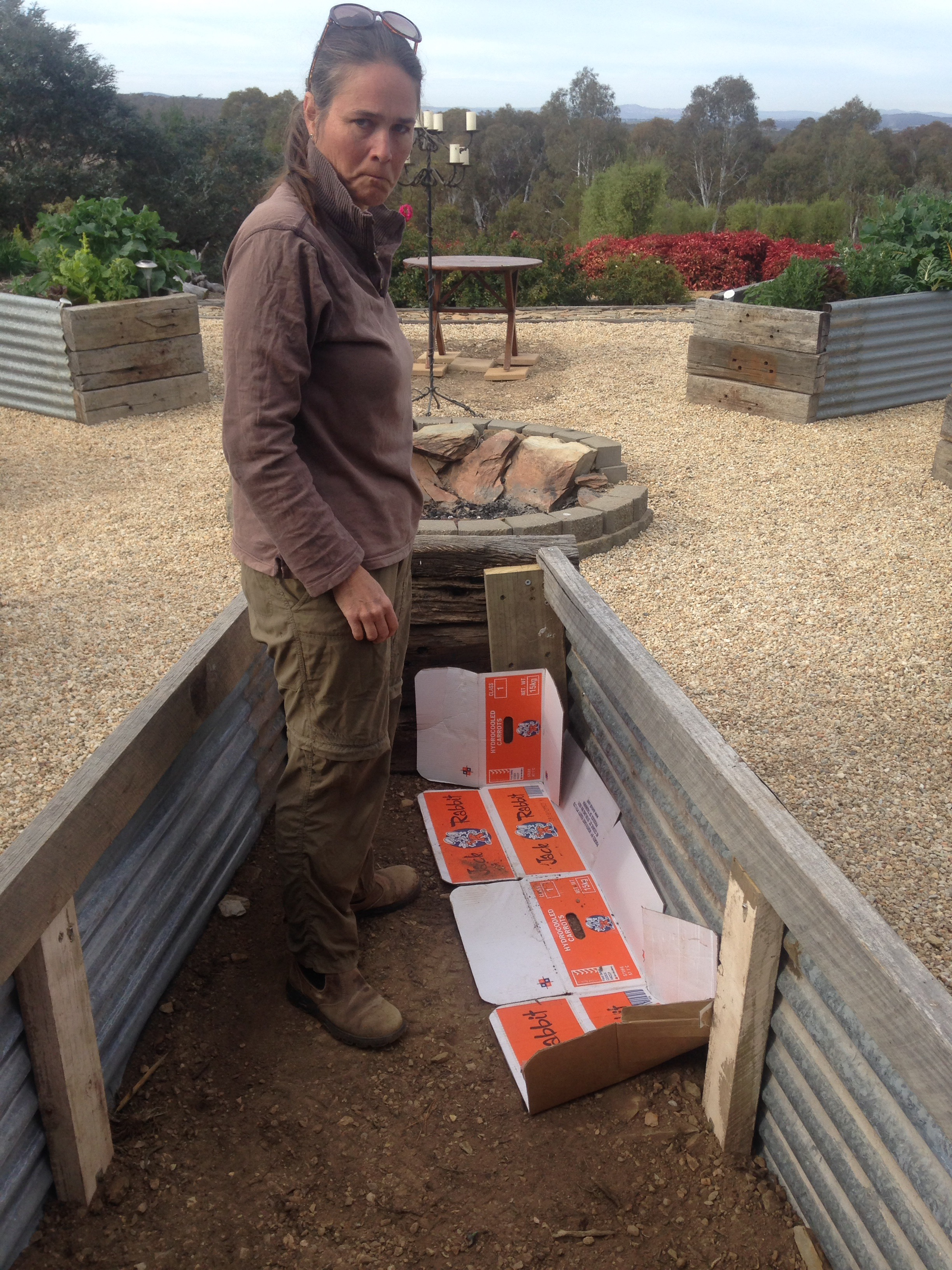 How to build a wicking garden bed