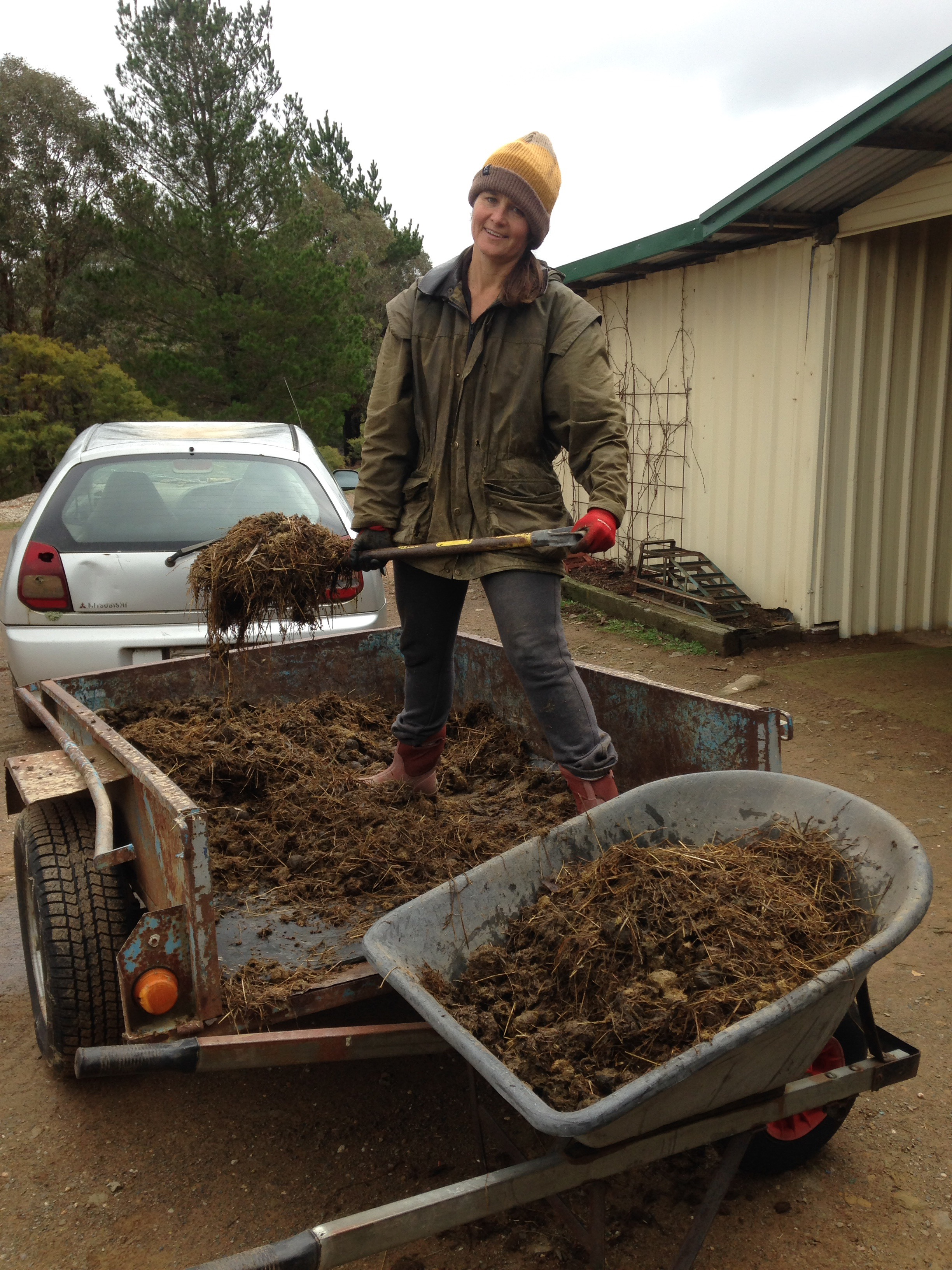 How to build a wicking bed